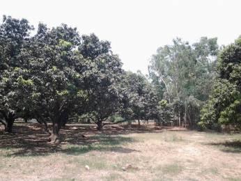 4065 sqft, Plot in Builder Project Haridwar, Haridwar at Rs. 1.2600 Cr