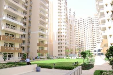 1050 sqft, 2 bhk Apartment in Gaursons India Ltd. Gaur City 5th Avenue Sector-4 Gr Noida, Greater Noida at Rs. 9000