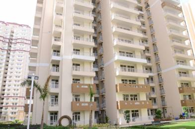 955 Sq Ft 2 Bhk 2t Apartment For Rent In Nirala Aspire At Greater Noida West By Agent Green Homess
