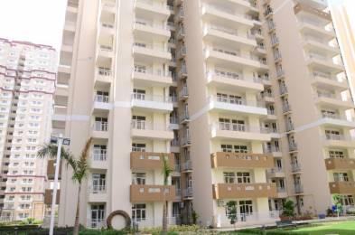 955 sqft, 2 bhk Apartment in Builder Nirala Aspire Greater Noida West, Greater Noida at Rs. 8000