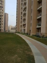719 sqft, 1 bhk Apartment in Unitech Uniworld Gardens 2 Sector 47, Gurgaon at Rs. 55.0000 Lacs