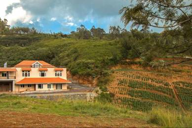13500 sqft, Plot in Builder WELL DEVELOPED GATED PLOTS ketti pallada, Ooty at Rs. 79.0000 Lacs