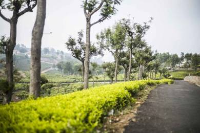 6968 sqft, Plot in Builder Well Gated Plots Coonoor, Ooty at Rs. 52.0000 Lacs