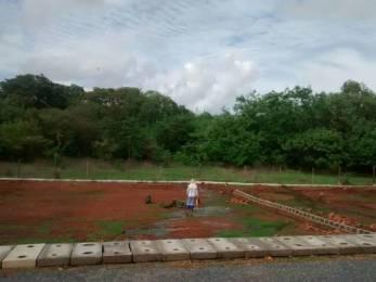 5059 sqft, Plot in Builder NA PLOTS WELL DEVELOPED GATED COMMUNITY Zuarinagar, Goa at Rs. 75.2000 Lacs