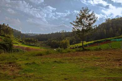 13500 sqft, Plot in Builder Plots in Gated Community ketti pallada, Ooty at Rs. 79.0000 Lacs