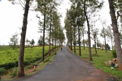 3000 sqft, Plot in Builder Affordable Plots near OOTY Bengalmattam, Ooty at Rs. 10.5000 Lacs