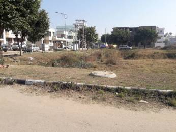 1350 sqft, Plot in Gillco Heights Gillco Valley, Mohali at Rs. 36.0000 Lacs