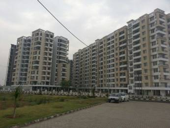 1160 sqft, 2 bhk Apartment in TDI Wellington Heights Sector 117 Mohali, Mohali at Rs. 40.0000 Lacs