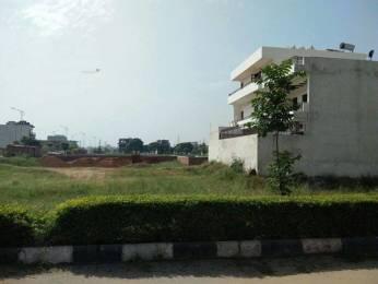 2250 sqft, Plot in TDI City Plots 1 Sector 118 Mohali, Mohali at Rs. 60.0000 Lacs