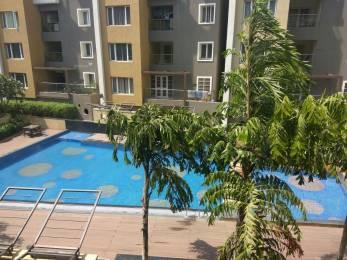 1600 sqft, 3 bhk Apartment in Ceebros Belvedere Sholinganallur, Chennai at Rs. 35000