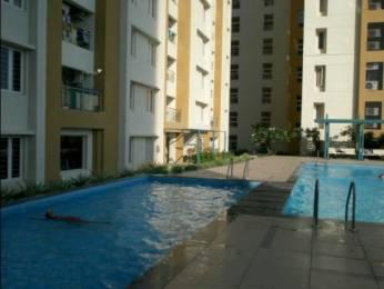750 sqft, 2 bhk Apartment in Ceebros Boulevard Thoraipakkam OMR, Chennai at Rs. 28000