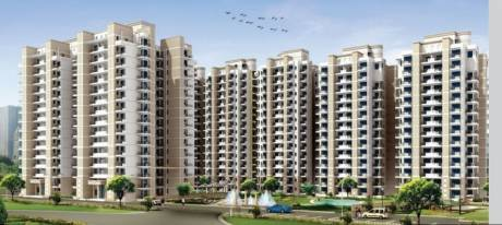265 sqft, 1 bhk Apartment in Builder Project Gurgaon Road, Gurgaon at Rs. 66.5000 Lacs
