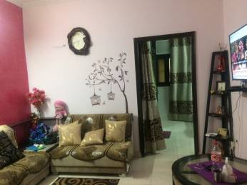 1080 sqft, 3 bhk IndependentHouse in Builder Pratham house Sector 48, Faridabad at Rs. 60.0000 Lacs