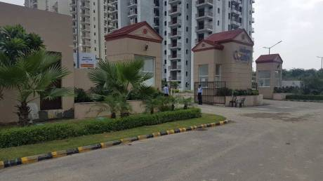 1050 sqft, 2 bhk Apartment in MGH MGH Mulberry County Sector 70, Faridabad at Rs. 35.0000 Lacs