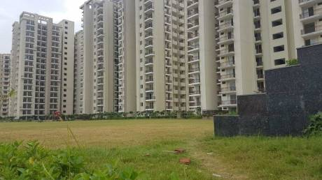 1075 sqft, 2 bhk Apartment in MGH MGH Mulberry County Sector 70, Faridabad at Rs. 35.0000 Lacs