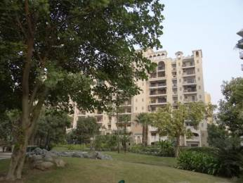 1500 sqft, 3 bhk Apartment in ATS Village Sector 93A, Noida at Rs. 1.1500 Cr