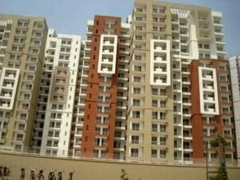 1170 sqft, 2 bhk Apartment in Jaypee Pavilion Court Royale Sector-128 Noida, Noida at Rs. 84.2400 Lacs