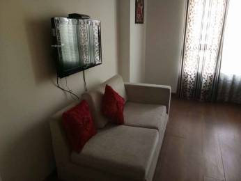 1321 sqft, 1 bhk Apartment in Central Park The Room Sector 48, Gurgaon at Rs. 1.6556 Cr