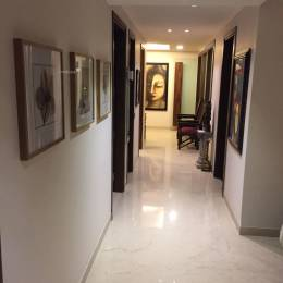 4500 sqft, 5 bhk Villa in Builder Project Panchsheel Park, Delhi at Rs. 27.0000 Cr