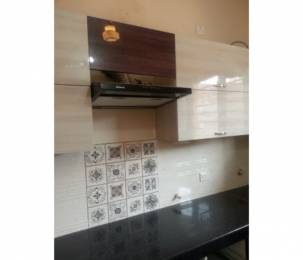 1200 sqft, 3 bhk BuilderFloor in Builder Project Chandigarh Road, Chandigarh at Rs. 36.0000 Lacs