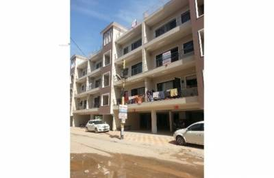 1450 sqft, 3 bhk Apartment in Builder motia city Chandigarh, Chandigarh at Rs. 41.0000 Lacs