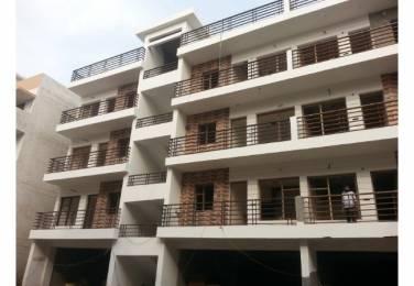 1480 sqft, 3 bhk BuilderFloor in Mona Greens 2 Gazipur, Zirakpur at Rs. 36.0000 Lacs