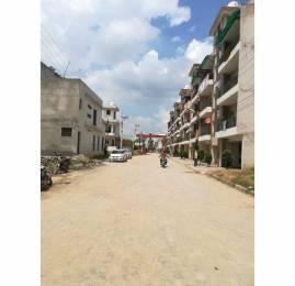 1650 sqft, 3 bhk BuilderFloor in Builder PAVITRA HOMES Dhakoli Zirakpur, Chandigarh at Rs. 36.5000 Lacs