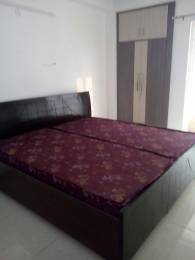 1385 sqft, 3 bhk Apartment in Amrapali Pan Oasis Sector 70, Noida at Rs. 16500