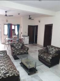 1750 sqft, 3 bhk Apartment in Builder Shatabdi Vihar Sector 52 Sector 52, Noida at Rs. 26000
