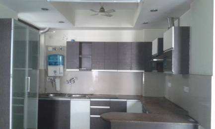 1925 sqft, 3 bhk Apartment in Builder Project Sector 7 Vaishali, Ghaziabad at Rs. 1.1200 Cr