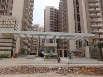 1065 sqft, 2 bhk Apartment in Arihant Arden Sector 1 Noida Extension, Greater Noida at Rs. 38.0000 Lacs
