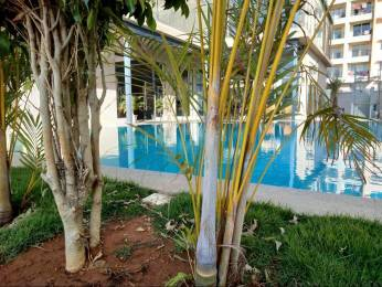1162 sqft, 2 bhk Apartment in Arvind Sporcia Thanisandra, Bangalore at Rs. 66.0000 Lacs