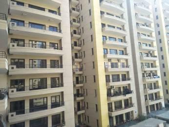 1862 sqft, 3 bhk Apartment in RPS Savana Sector 88, Faridabad at Rs. 63.5000 Lacs
