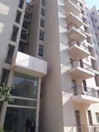 1128 sqft, 3 bhk Apartment in BPTP Park Elite Premium Sector 84, Faridabad at Rs. 34.9900 Lacs