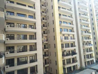 1862 sqft, 3 bhk Apartment in RPS Savana Sector 88, Faridabad at Rs. 15500