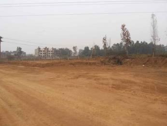 594 sqft, Plot in GBP Superia Gulabgarh, Dera Bassi at Rs. 8.9034 Lacs