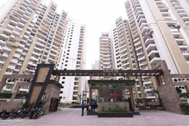 965 sqft, 2 bhk Apartment in Divyansh Flora Sector 16C Noida Extension, Greater Noida at Rs. 32.0000 Lacs