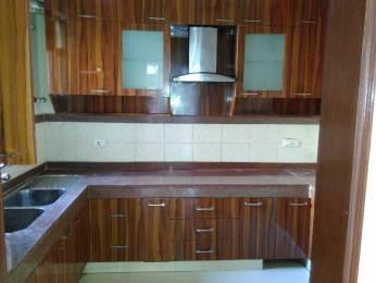 1700 sqft, 3 bhk Apartment in Builder Project Dwarka New Delhi 110075, Delhi at Rs. 26000