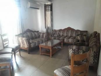2300 sqft, 4 bhk Apartment in Hanumant Bollywood Heights 2 Panchkula Sec 20, Chandigarh at Rs. 33000