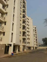 1570 sqft, 3 bhk Apartment in Parsvnath Regalia II Phase Raj Bagh, Ghaziabad at Rs. 64.0000 Lacs