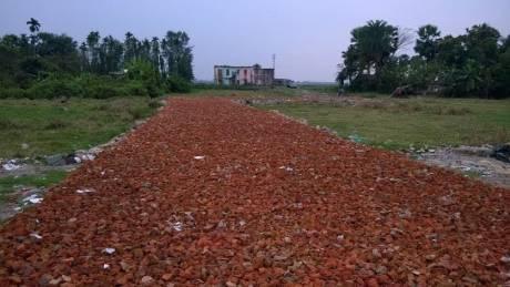 1444 sqft, Plot in Builder Project Baruipur Amtala Road, Kolkata at Rs. 8.0000 Lacs