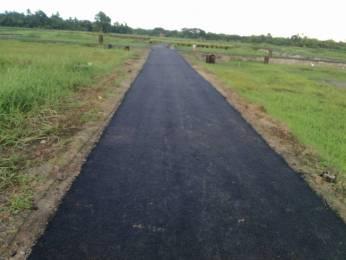 1445 sqft, Plot in Builder Project Barasat, Kolkata at Rs. 6.0000 Lacs