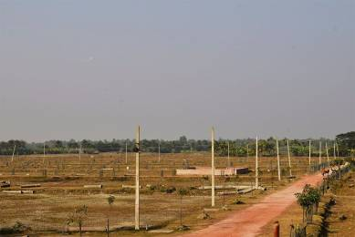 1449 sqft, Plot in Builder Project Baruipur Amtala Road, Kolkata at Rs. 3.0000 Lacs