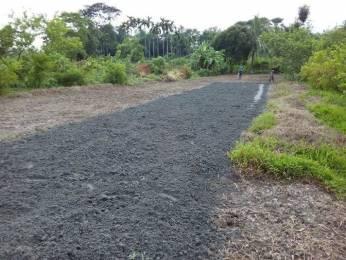 1457 sqft, Plot in Builder Project Baruipur Amtala Road, Kolkata at Rs. 17.2000 Lacs