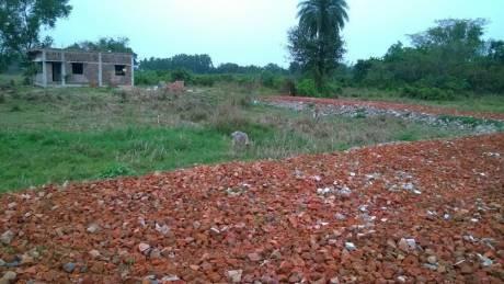 1880 sqft, Plot in Builder Project Baruipur Amtala Road, Kolkata at Rs. 10.0000 Lacs