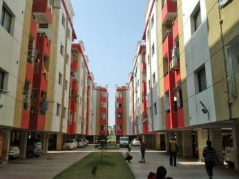 950 sqft, 2 bhk Apartment in Builder Project Kanadia Road, Indore at Rs. 8000