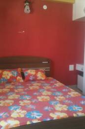 1000 sqft, 3 bhk Apartment in Builder Project Bengali Square, Indore at Rs. 16000