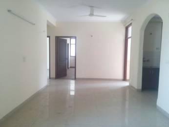 1200 sqft, 2 bhk Apartment in Builder Vikram Nagar Apartment Sector 12, Delhi at Rs. 1.0500 Cr