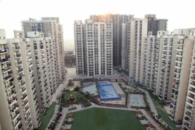 1010 sqft, 2 bhk Apartment in Builder Project Gaur City 2, Greater Noida at Rs. 40.4000 Lacs