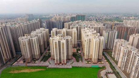 1145 sqft, 2 bhk Apartment in Sam Palm Olympia Sector 16C Noida Extension, Greater Noida at Rs. 47.5000 Lacs